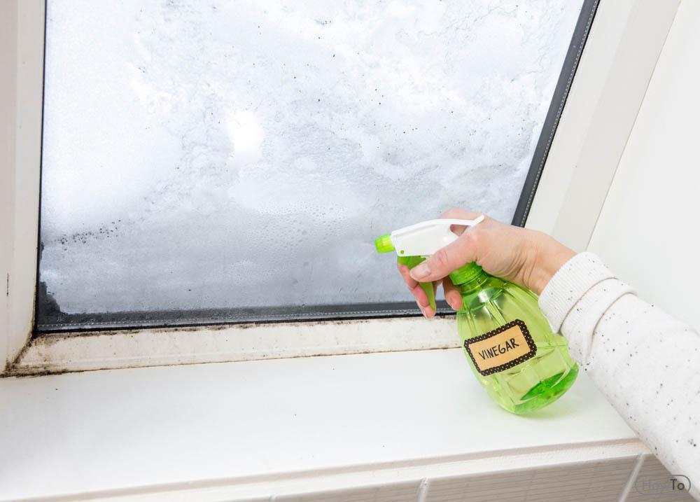 How to Repel Spiders Spray Vinegar